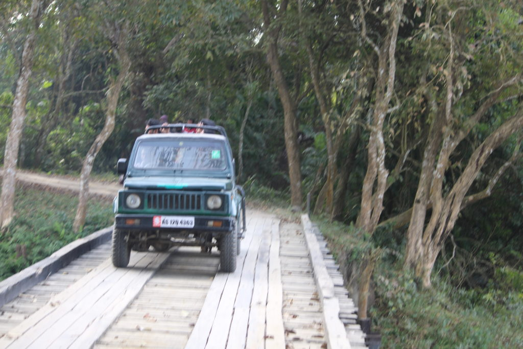 Jeep Safari In Kaziranga